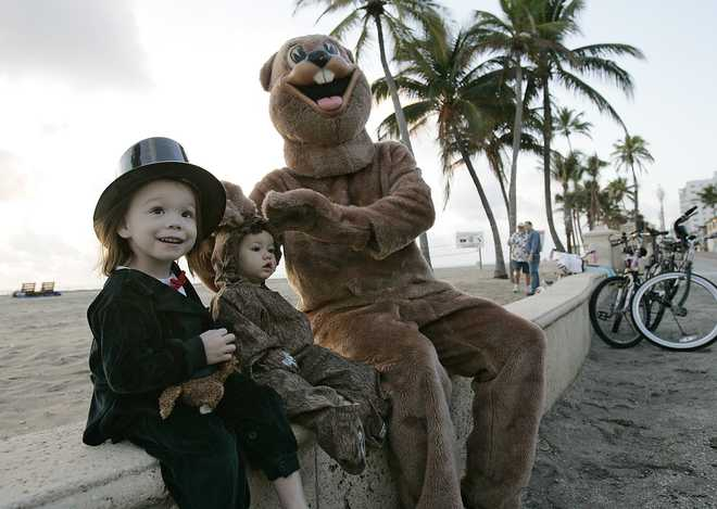Celebrate the 16th Annual Groundhog Day on Hollywood Beach Sun., Feb. 2, 2020